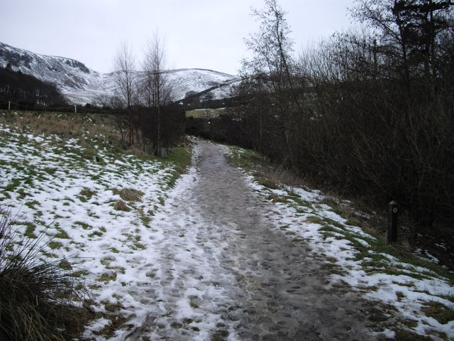 Swanston Path