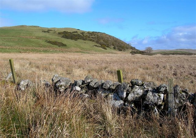 Marshland View