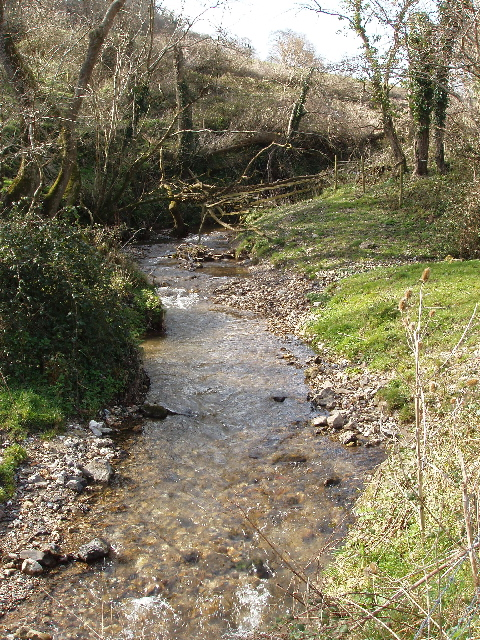 Old Mill Stream, Branscombe