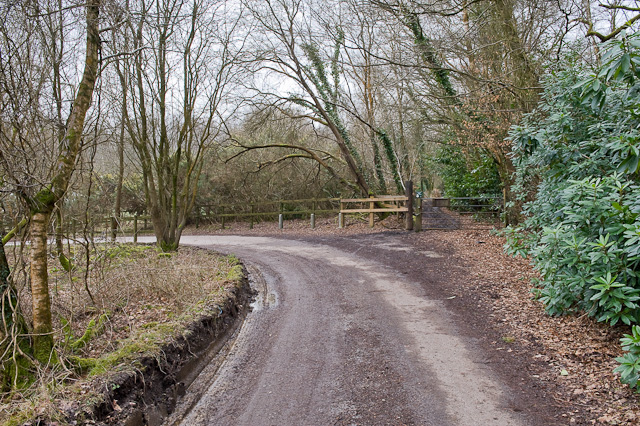 Driveway to Chilworth Kennels and Cattery