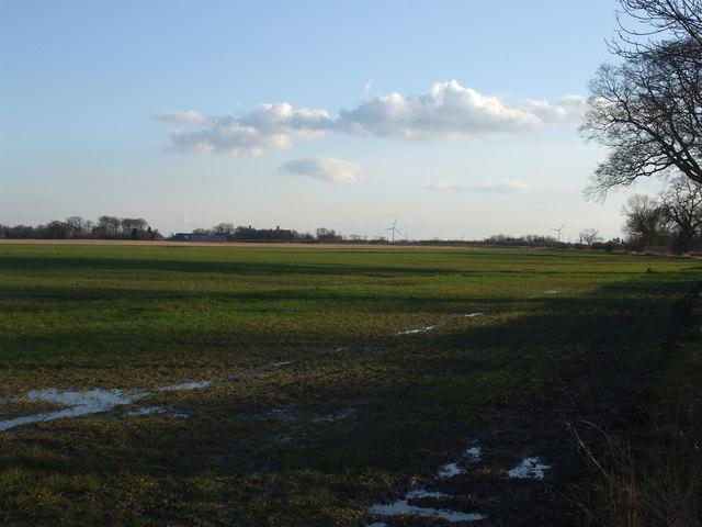 Fields towards Wressle