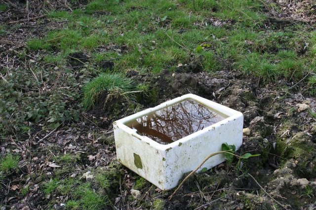 Sink in the field