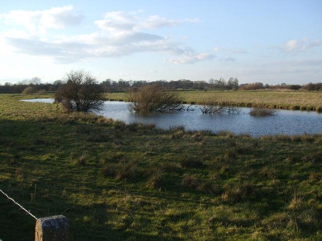 Angling pond