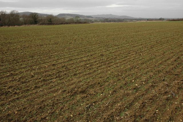 Arable land at Toddington