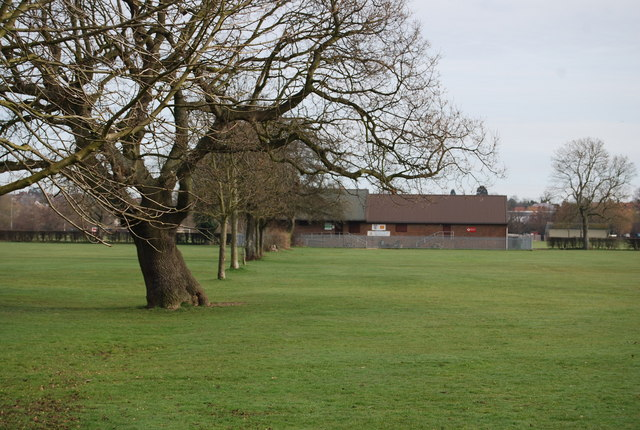 A line of  trees leading to the Pavilion, Castle Ground