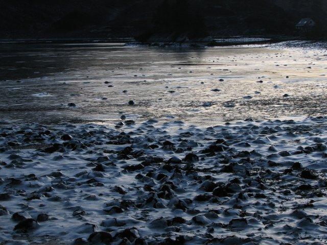 Frozen loch shore