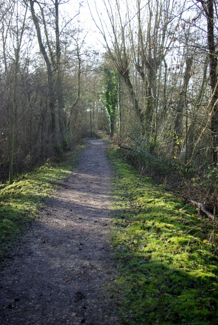 Path in Ufton Fields Nature Reserve