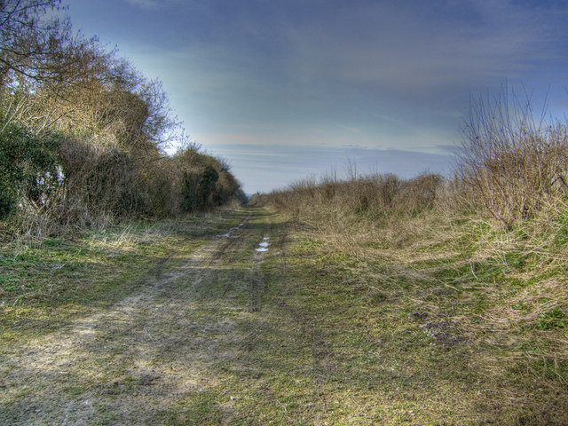 Path to Lower Lamborough Lane from Cheriton Lane
