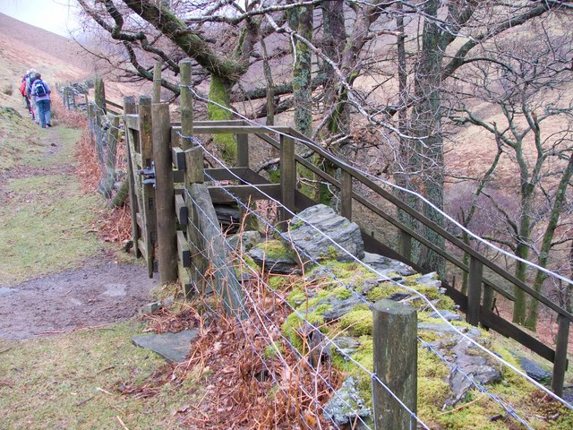 Ladder up to gate onto the moor