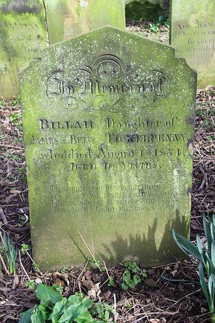Billah Tickelpenny