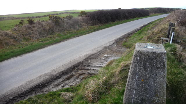 Roadside trig point