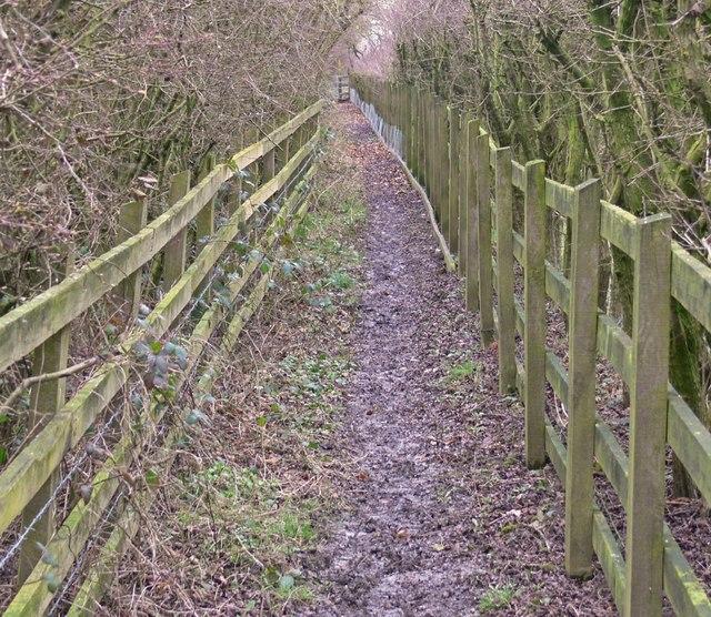 Public footpath to Markfield