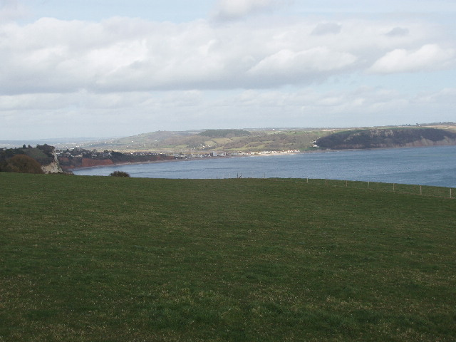 Field at Beer Head with view to Seaton