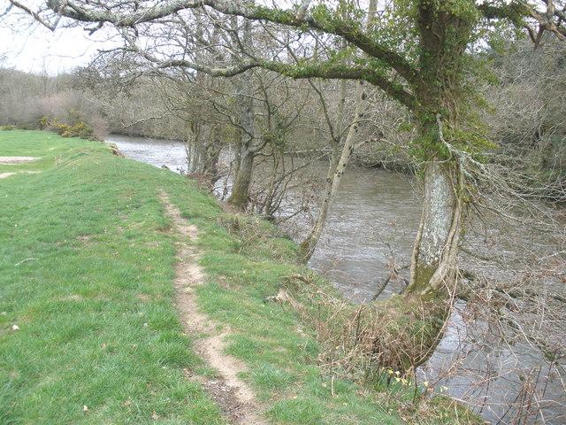 The River Torridge, near Blinsham