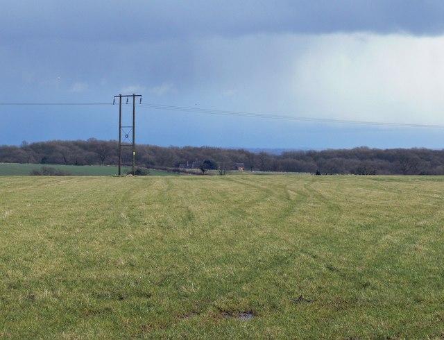 Farmland east of Thornton