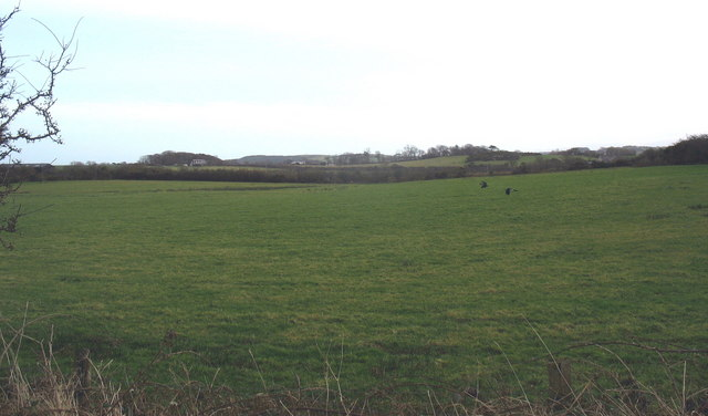 View eastwards from the Gadfa road across grazing land