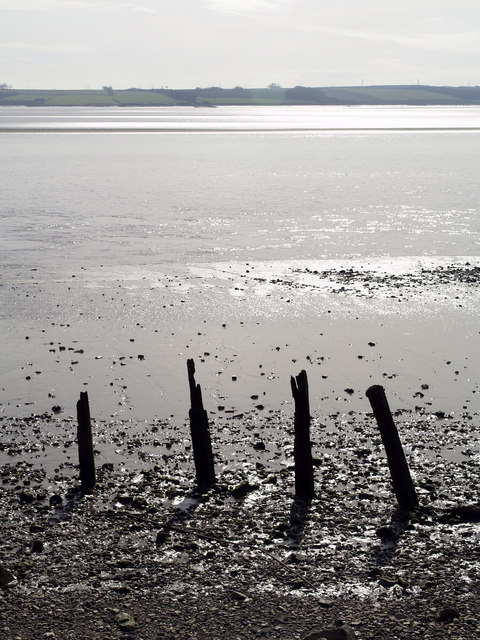 The River Humber Shoreline