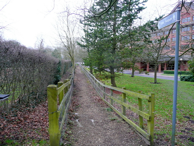 Footpath to Great Copse