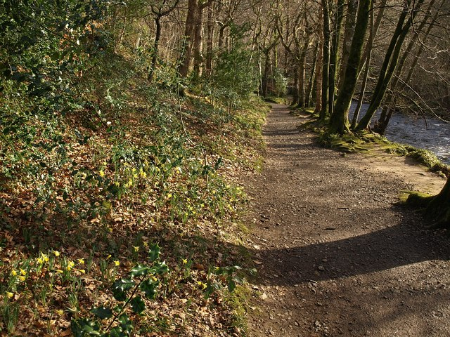 Riverside bridleway