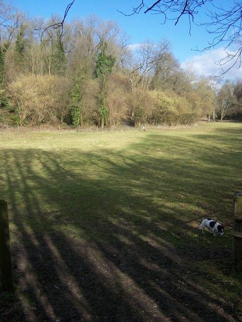 Footpath in gap in Long Bottom Wood