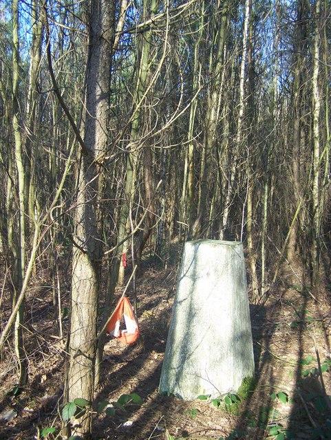 Triangulation Pillar in Shipbourne Forest
