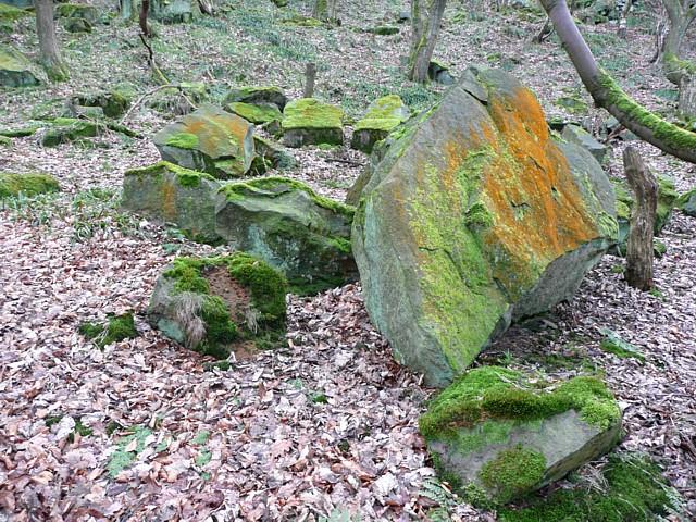 Quarry waste, Hathershelf Scout Wood, Mytholmroyd