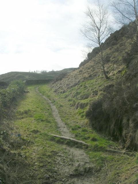 Bridleway - Pexwood Road, Bacup Road