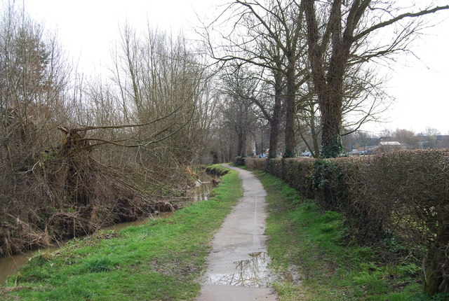 The Wealdway follows a ditch, Castle Grounds, Tonbridge (2)