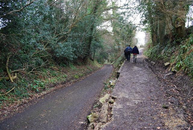 Hangers Way leaves Cottage Lane, Hawkley (2)