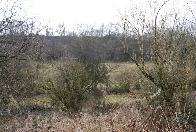 Scrubby land , south of the Hangers Way
