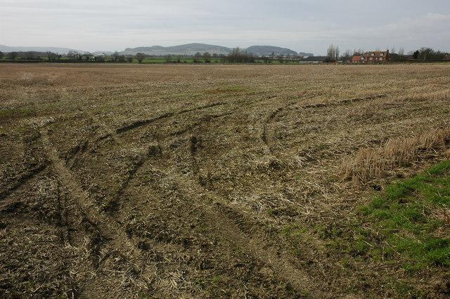 Bucklands Fields