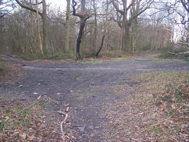 Bridleway junction on Lord's Walk