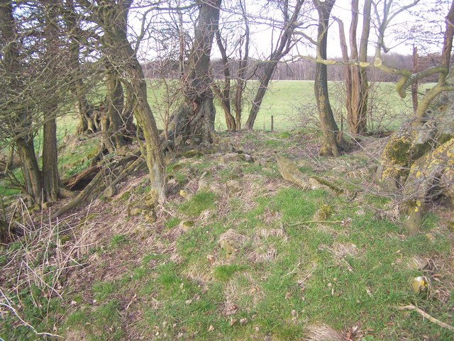 The remains of St Blaise's Chapel