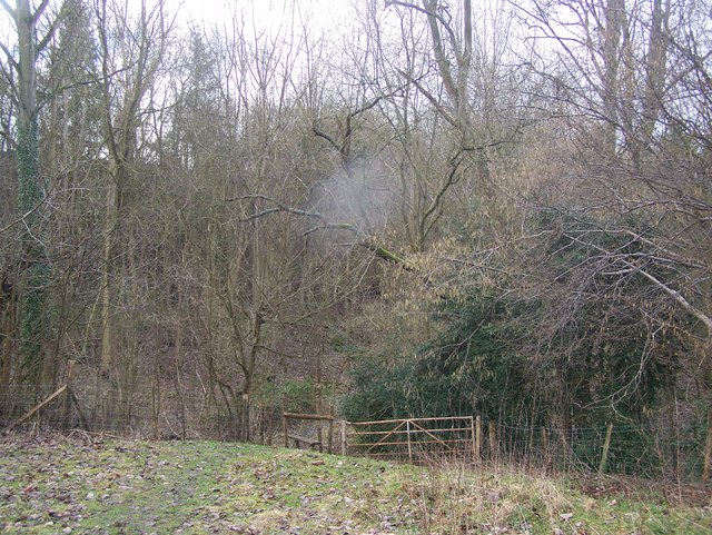 Footpath to Quarry Wood