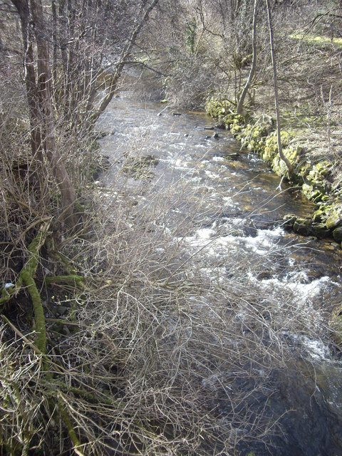 Downstream Dullan Water