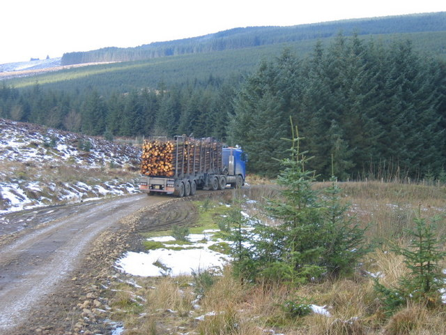 Log removal from Kielder Forest near High Long House
