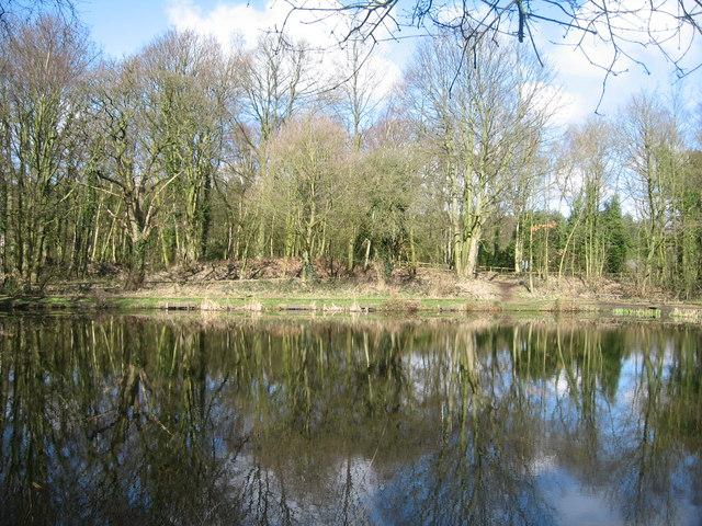 Fishing Pond, Siding Lane