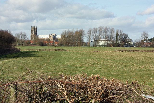 Pasture land south of Beverley