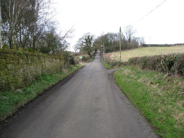 Wingfield Park - Park Lane