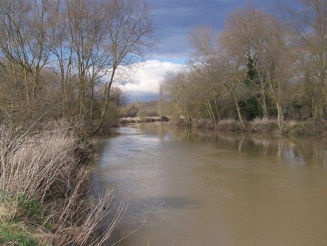 Brown River Medway