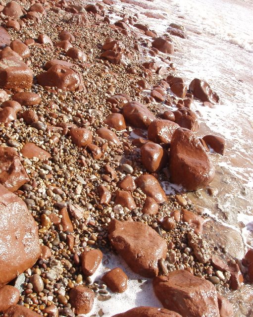 Red mudstone on shoreline stains the sea red