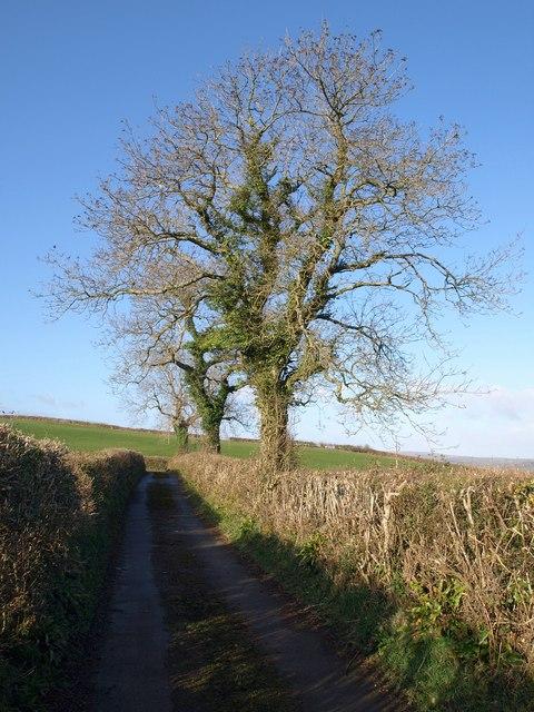 Lane above Chuley Cross