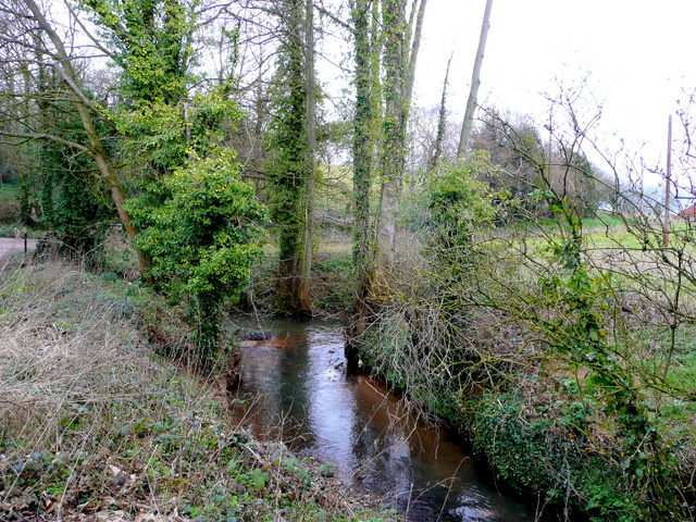 The Ell Brook by Cleeve Mill 2