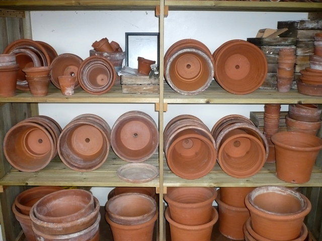 Shelves of flower pots in Darwin's laboratory, Down House