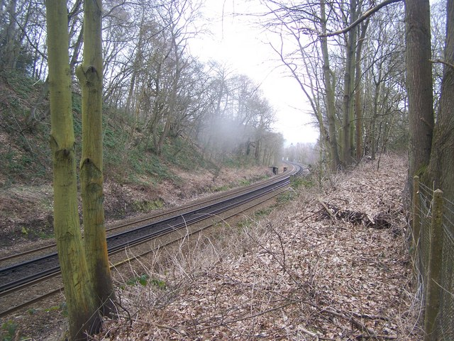The railway passes by The Warren