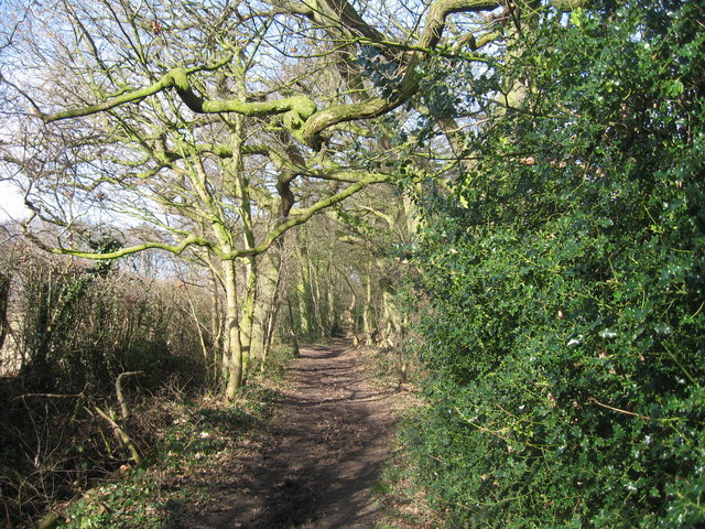 Footpath near Willaston