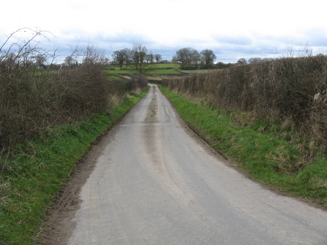 Lane Toward Hope's Rough