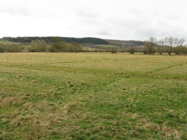 Arrow Valley Pastures