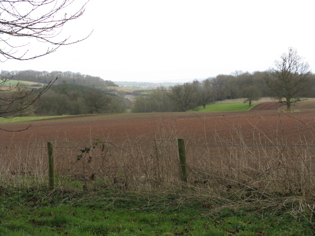 Field Near Broadfield Court