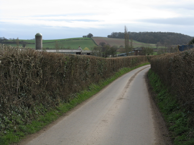 Lane To Moor Court Farm